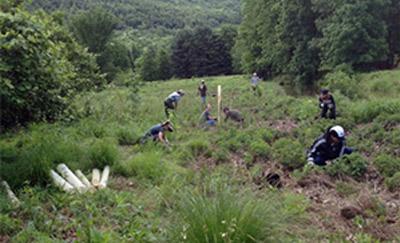 April 28, 2013 ~ Hudson River Valley Tree Planting