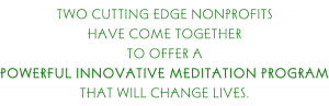 20140422095156-2-cutting-edge-nonprofits